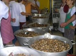 Escargots à Paulinet
