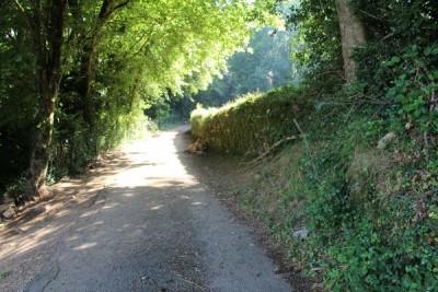 Route de paulin