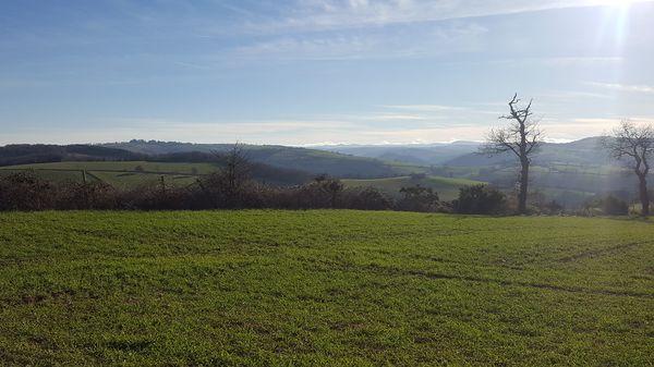 Panorama de Paulinet
